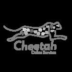 CheetahOS